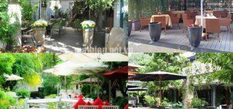 Báo giá thiết kế các mẫu mái che quán cafe sân vườn đẹp, rẻ theo yêu cầu uy tín nhất tại Tphcm